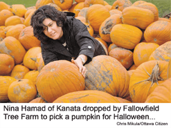 Photo of Nina Hamad of Kanata who dropped by Fallowfield Tree Farm to pick a pumpkin for Halloween (photo credit Chris Mikula/Ottawa Citizen
