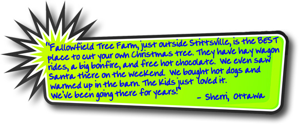 Fallowfield Tree Farm Christmas tree testimonial -