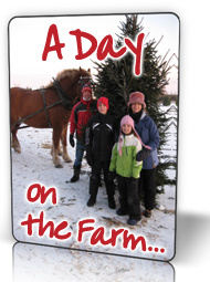 A happy family has just picked and cut their favorite Christmas tree at Fallowfield Tree Farm - Stittsville, Ontario - 613.720.3451