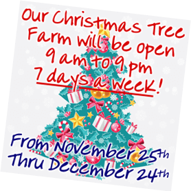 Graphic Christmas tree announcing Fallowfield Tree Farm will be open 7 days a week beginning on November 25th, through December 24th, 2017