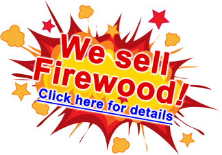 "Star-burst graphic with a headline that read ""We sell Firewood!"" announcing that Fallowfield Tree Farm now offers firewood for sale - call 613.720.3451"