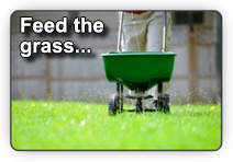 Photo of a person using a fertilizer spreader to ensure the newly-laid sod get the proper  necessary nutrients
